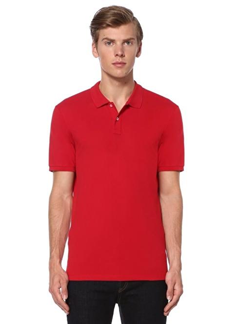 Sedwick Polo Yaka Tişört Kırmızı